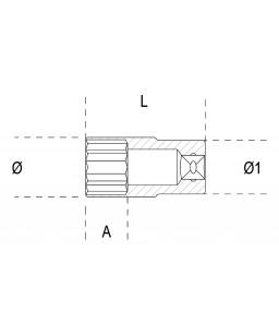 BUSSOLE ESAGONALI LUNGHE 1/2 A-L 10