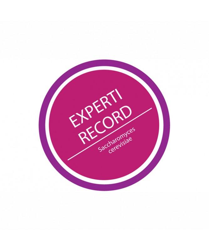 LIEVITO EXPERTI RECORD DA 500G.