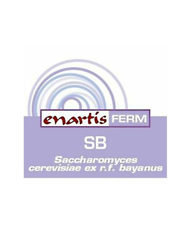 LIEVITO ENARTIS FERM SB GR. 500