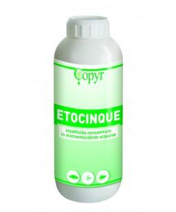 ETOCINQUE LT.1