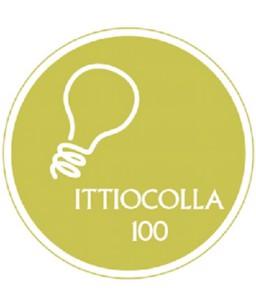 ITTIOCOLLA EXPERTI DA 250 GR.
