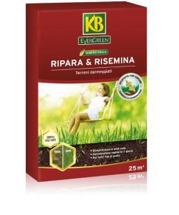 RIPARA E RISEMINA GR.500
