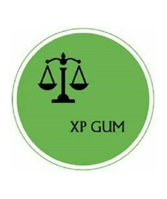 XP GUM EXPERTI DA KG 1 (GOMMA ARAB. LIQ)