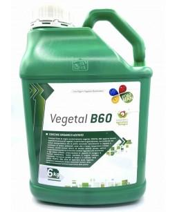 VEGETAL B60 KG.6