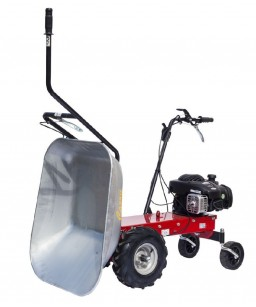 MOTO CARRIOLA CARRY RAL300 R/PNEUMAT. B&S