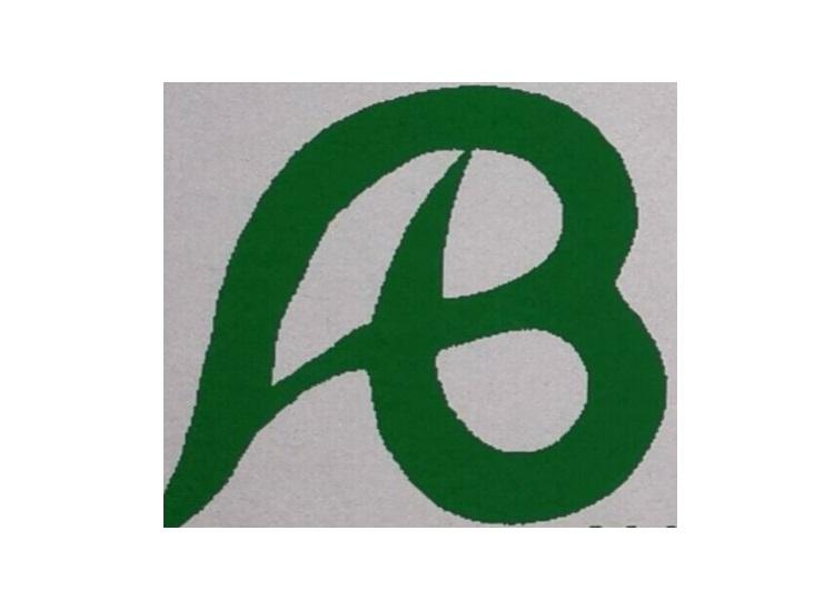 Alvaro Bernardoni logo